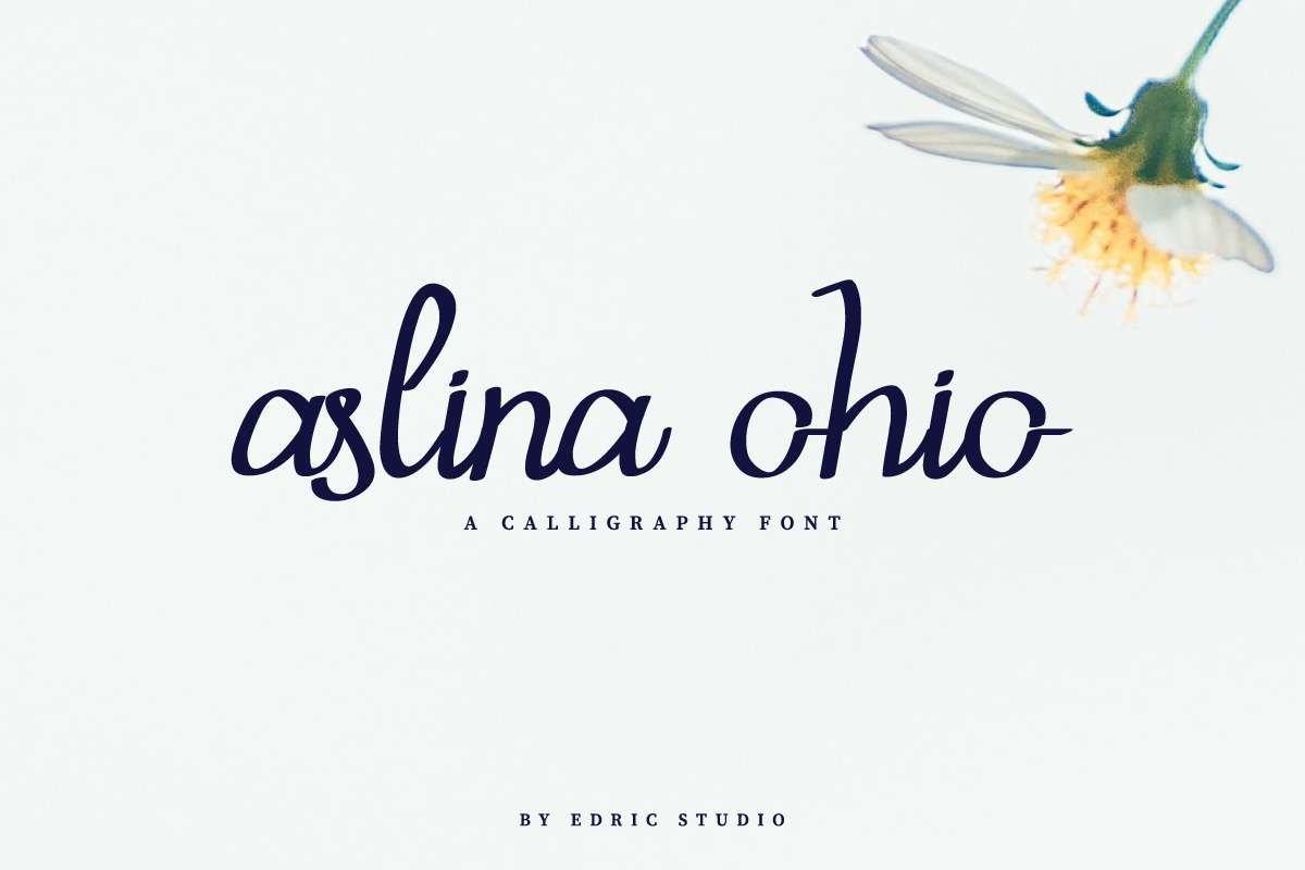 Aslina Ohio example image 1