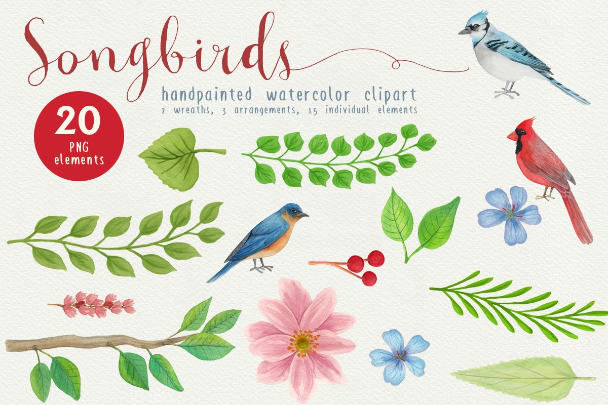 Big Animals & Birds Illustration Bundle example image 26