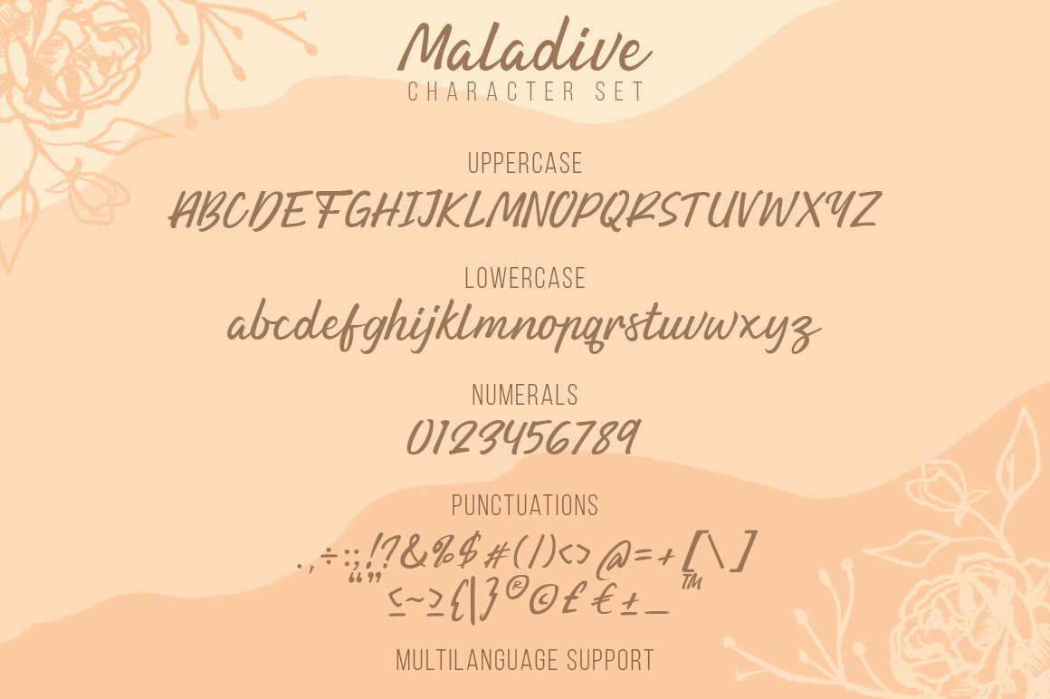 Maladive | Lovely Script Font example image 3