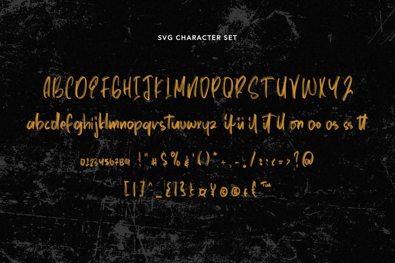 Declassify - SVG Script Font example image 5
