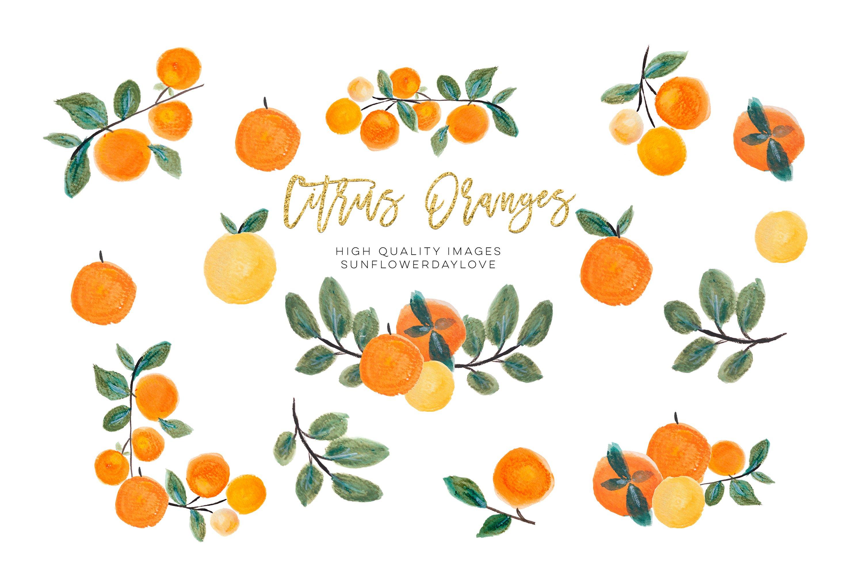 Orange Clip Art, Oranges Clipart, Fruits Floral Border example image 1
