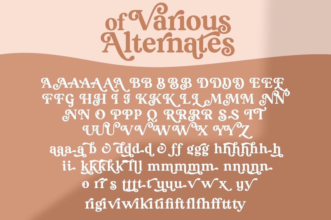 South Belgian Serif Font example image 10