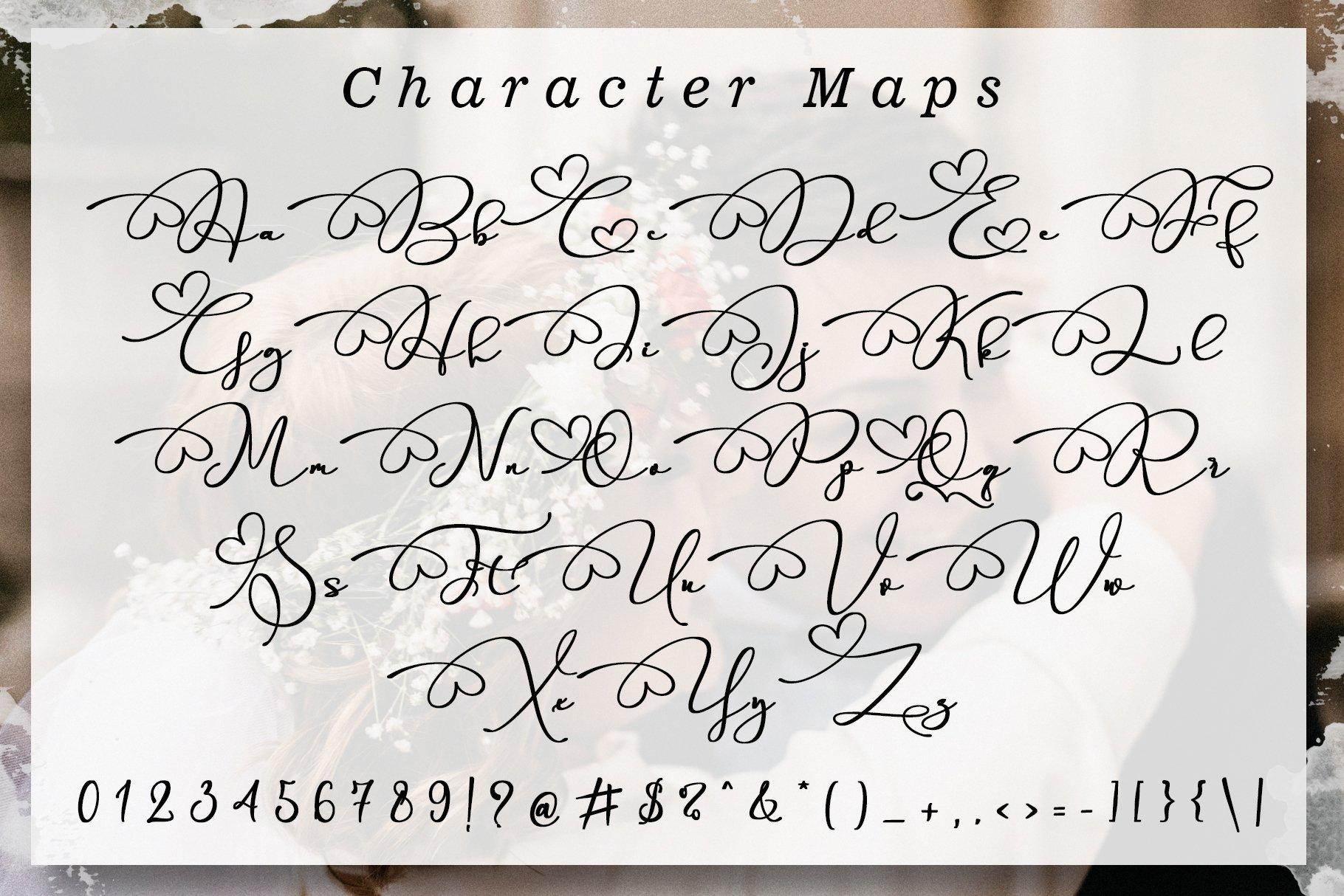 Parallove // Love Script Font example image 7