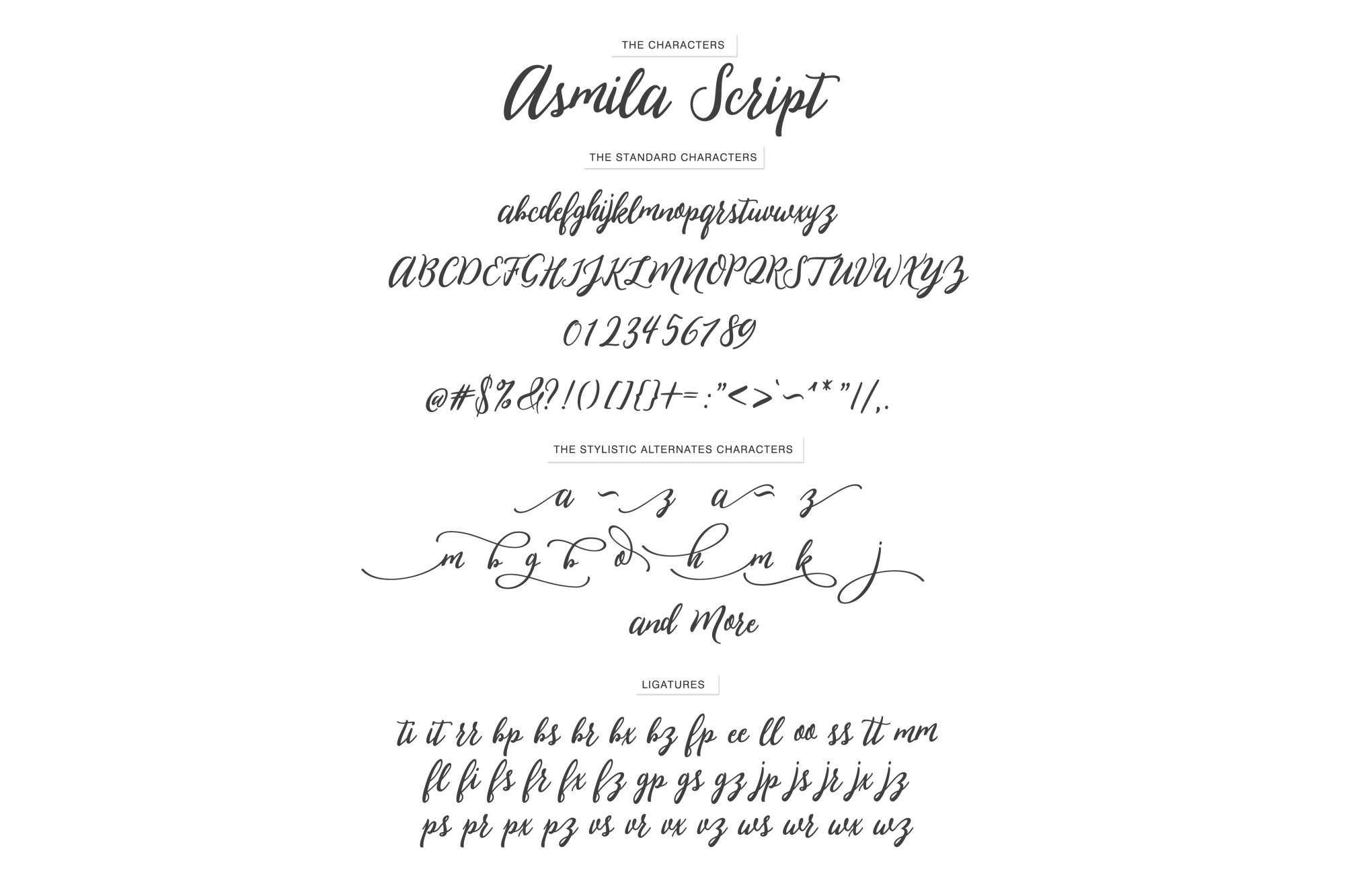 Asmila Script example image 6