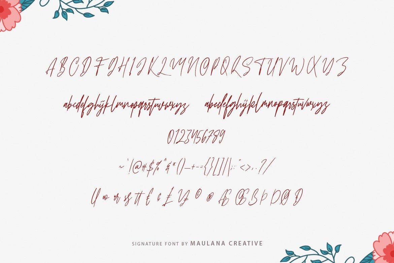 Sattiers Signature Font example image 10