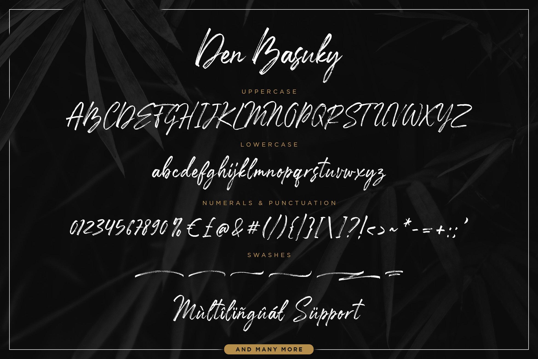Den Basuky - Rustic Brush Font example image 6