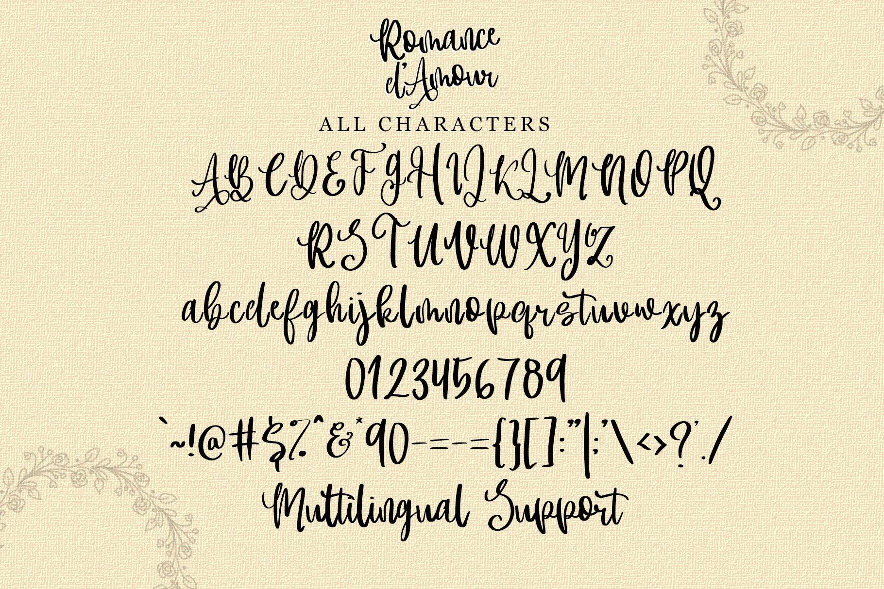 Romance d'Amour - Romantic HandWritten Script Font example image 9