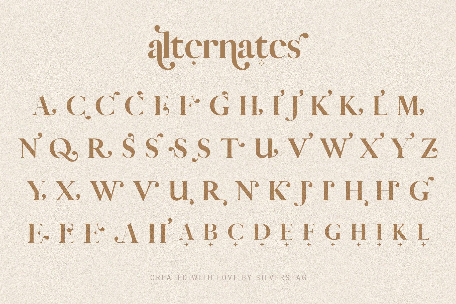 Vicky Christina - Chic & Stylish Ligature Serif Font example image 6