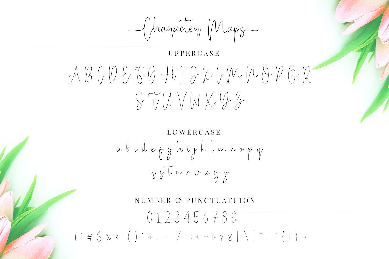 Miya Wayne - Modern Lovely Script Font example image 13