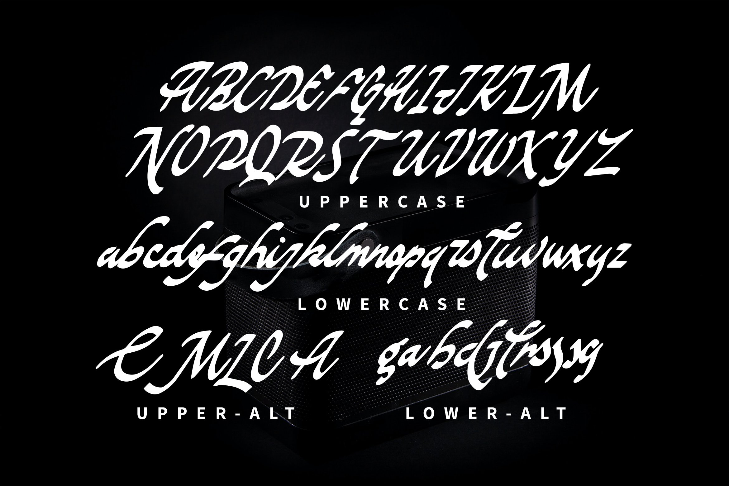 The Murious- Calligraphy Fonts example image 4
