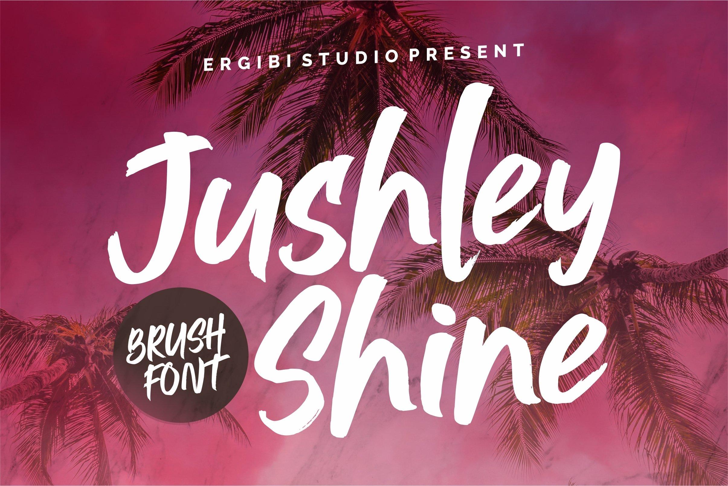 Jushley Shine - BRUSH FONT example image 1