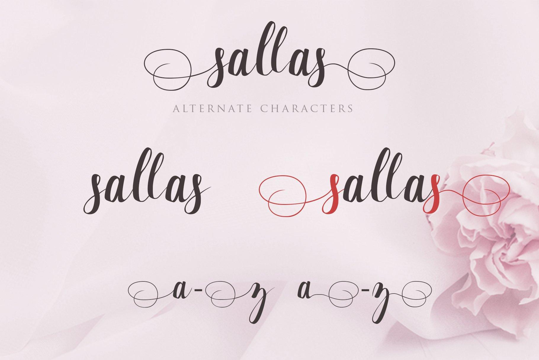 Sallas example image 2