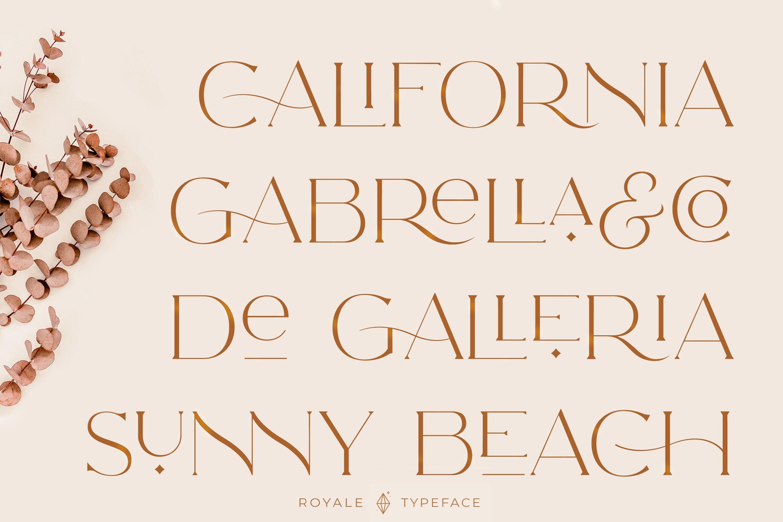 Royale Luxurious Typeface example image 14