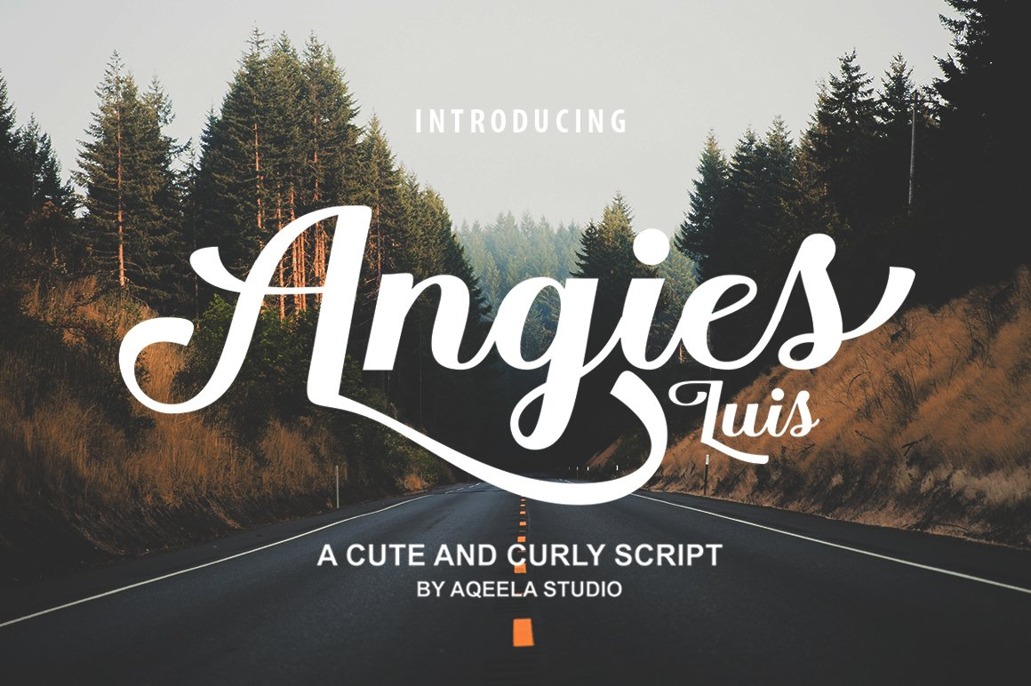 28 Fancy Script Fonts example image 19