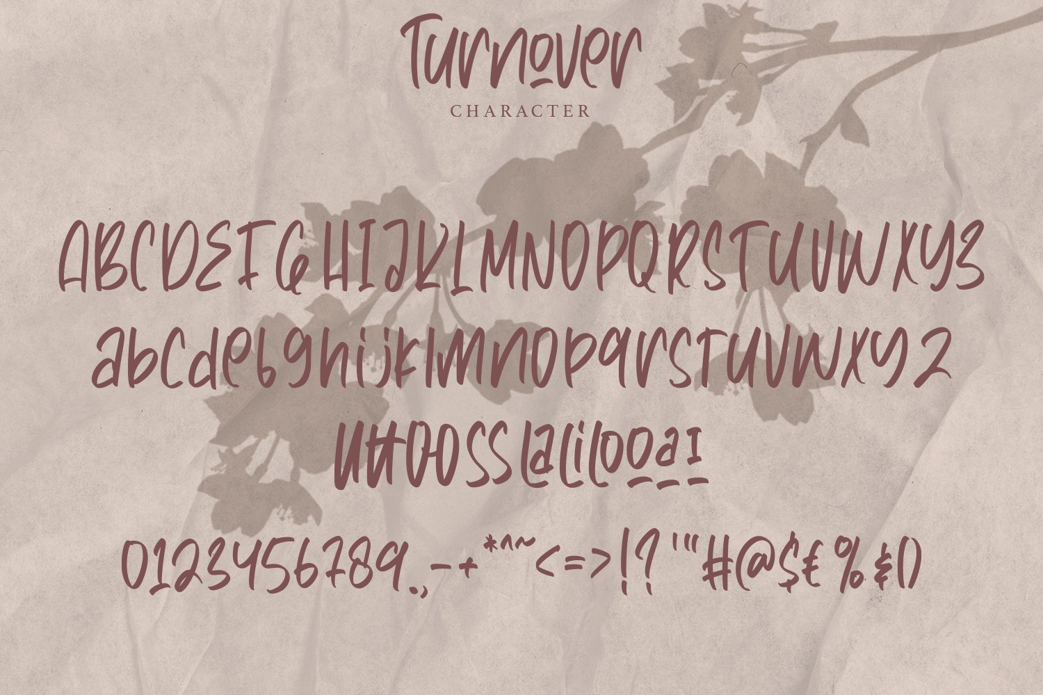 Turnover - Handwritten Font example image 7