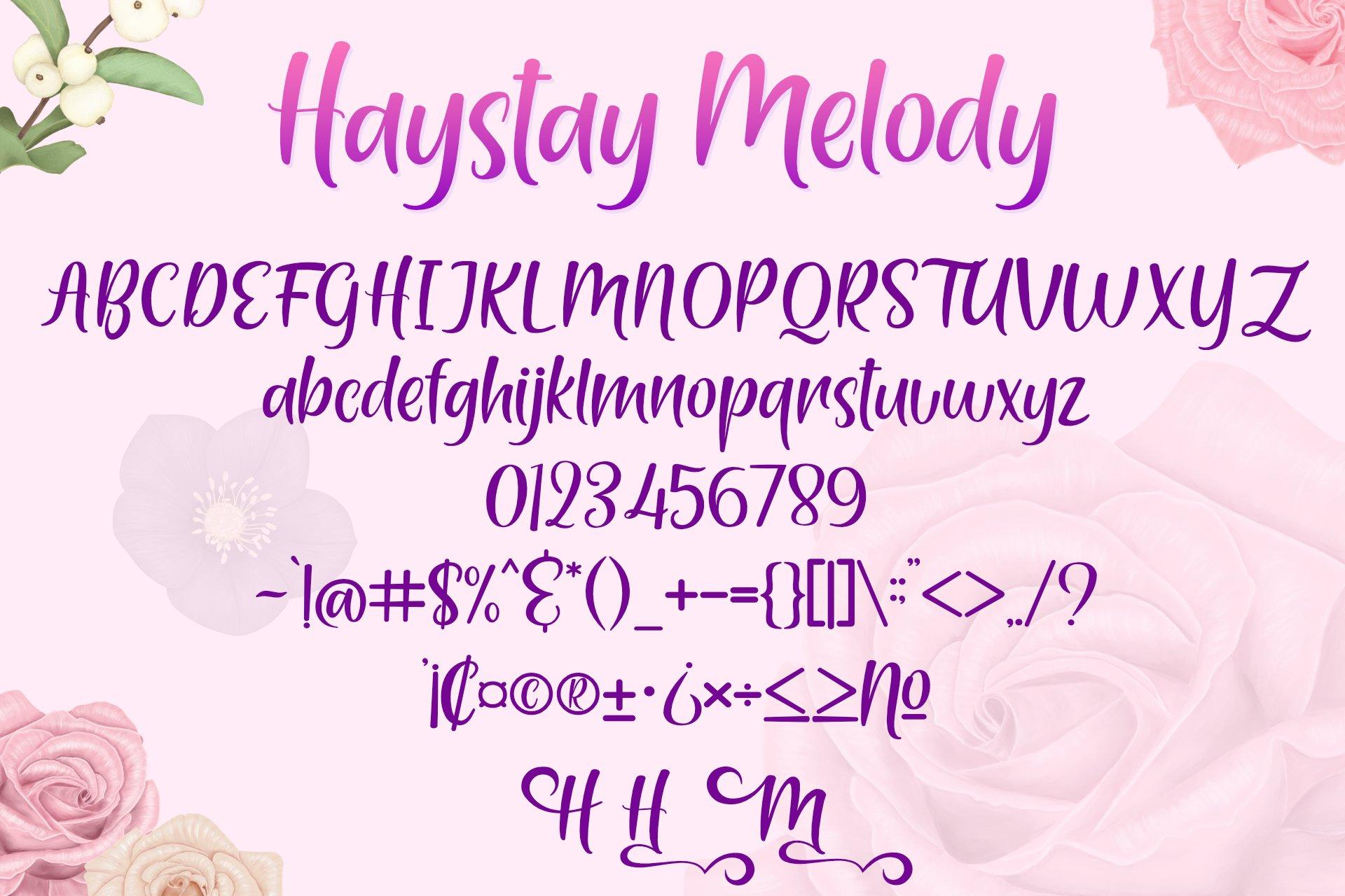 Haystay Melody example image 5