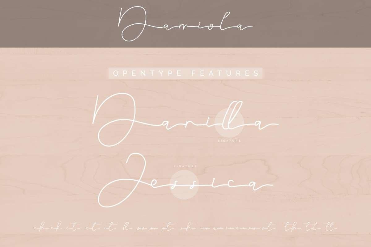 Damiola example image 10