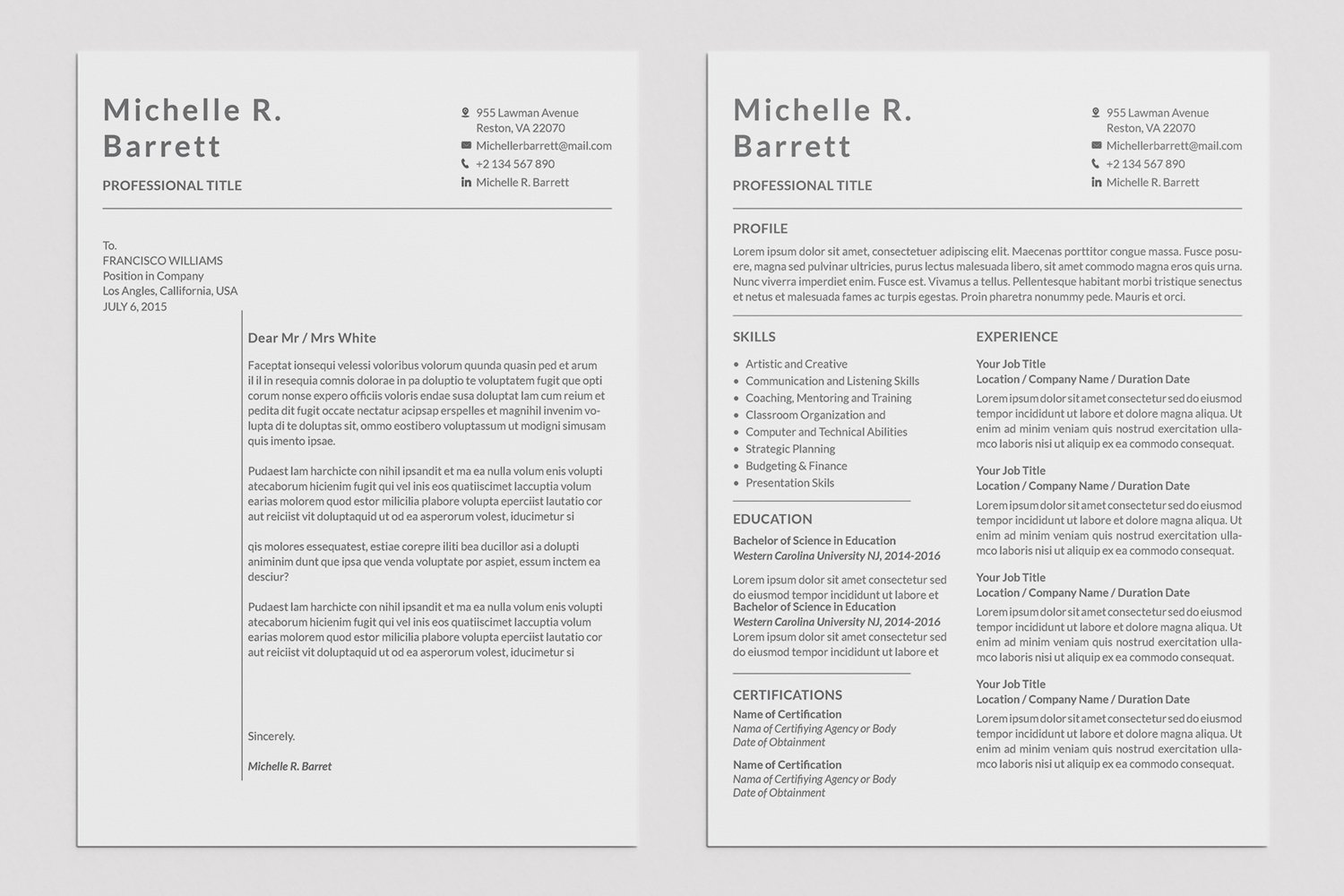 Professional Resume Templates example image 8