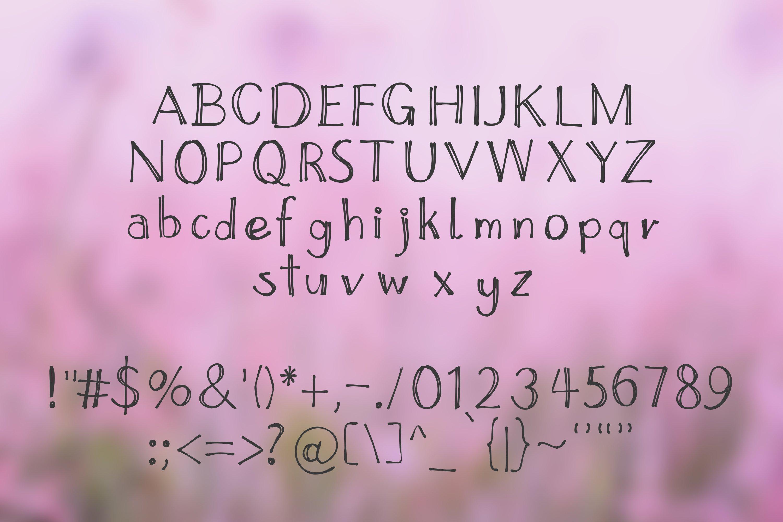14 Fonts bundle vol.3 example image 22