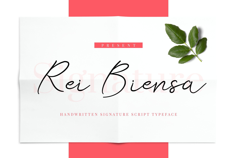 Rei Biensa - Casual Signature Script Typeface example image 1