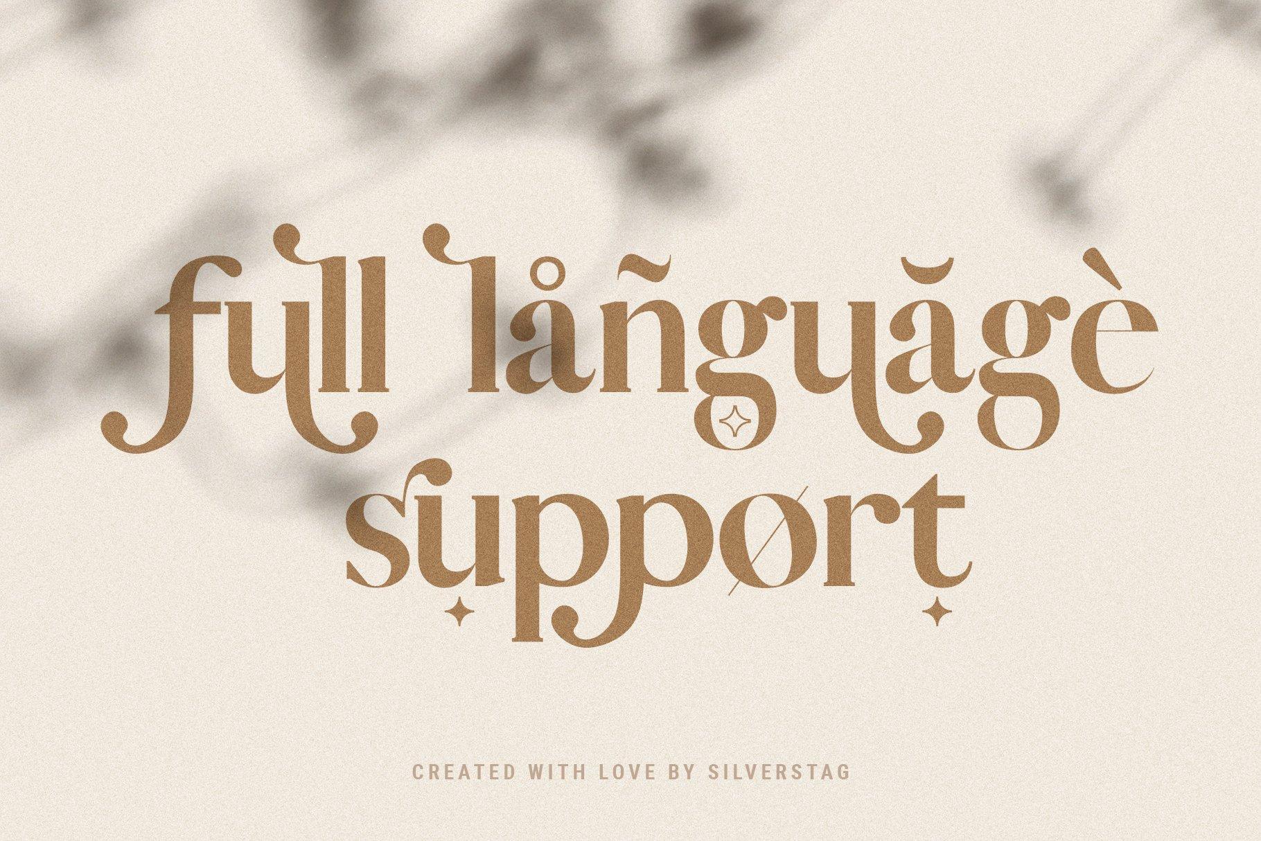 Vicky Christina - Chic & Stylish Ligature Serif Font example image 17