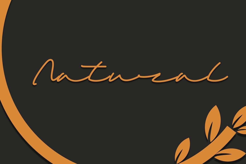 Sandreas - Luxury Signature Font example image 4