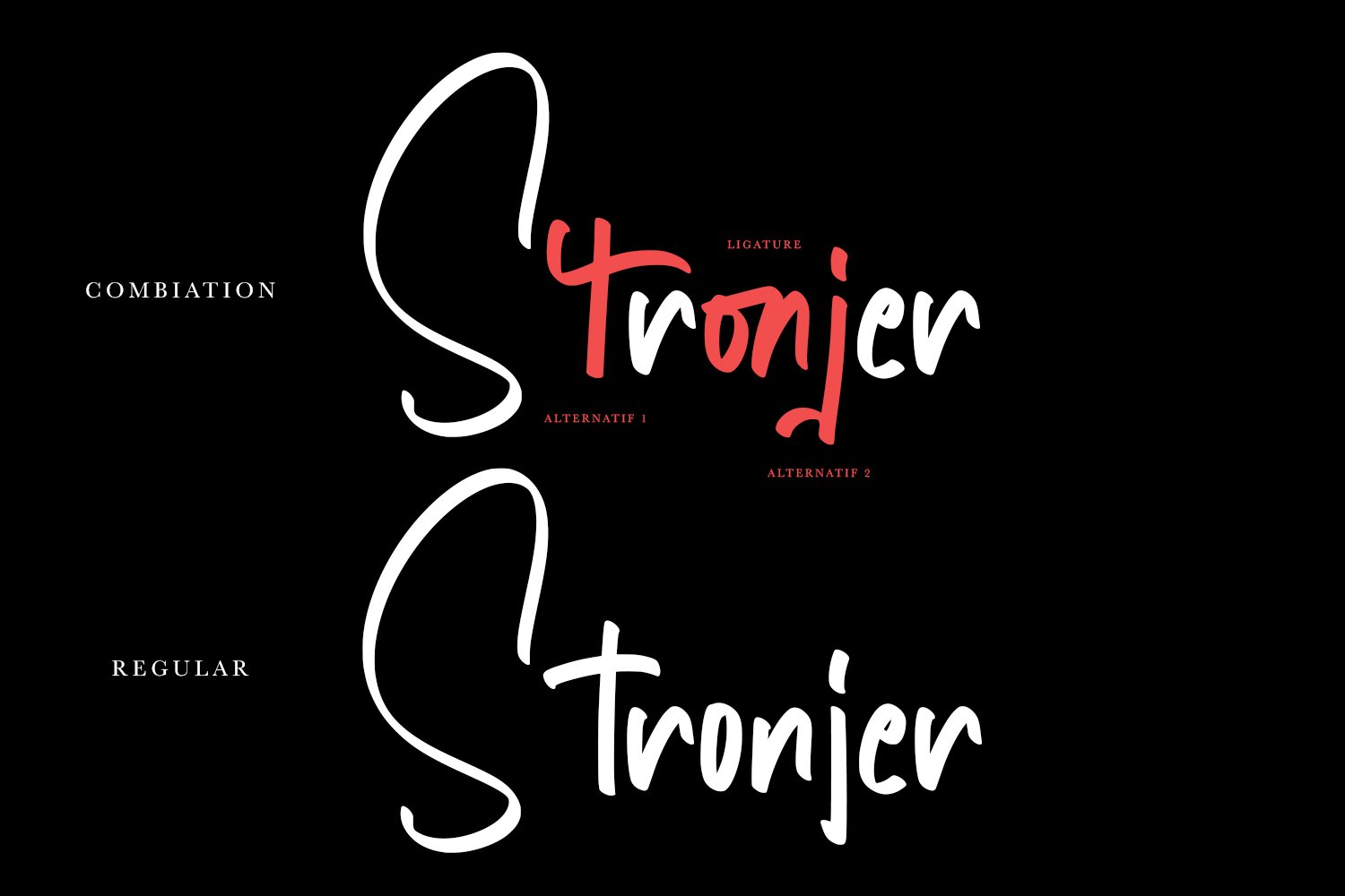 Stronjer - Script Fonts example image 2