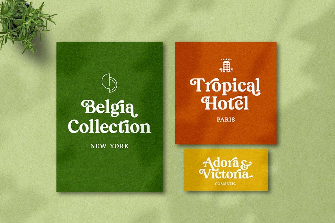 South Belgian Serif Font example image 12