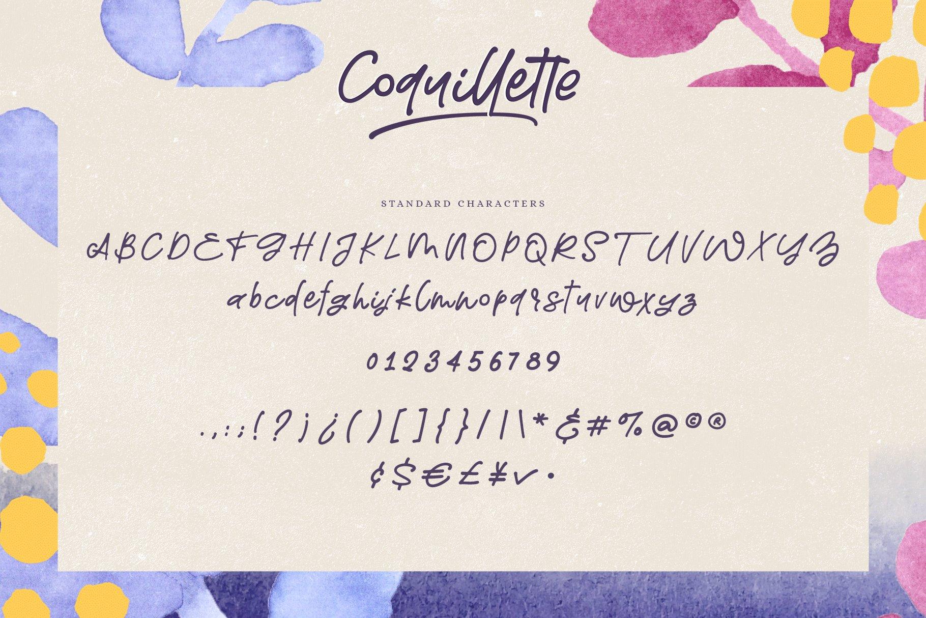 Coquillette | A Handwritten Script example image 7