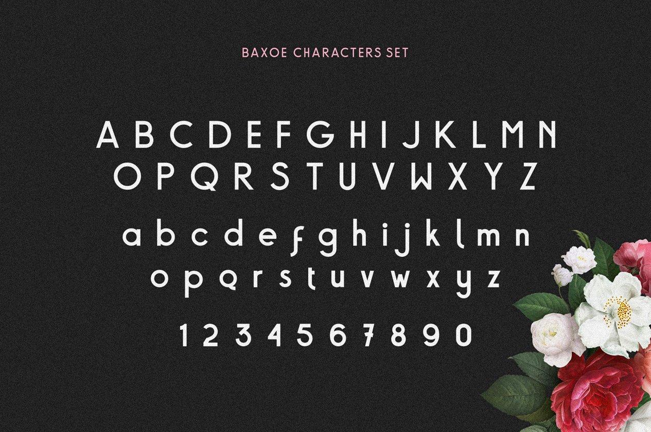 Baxoe | Elegant and Fancy Typeface example image 2