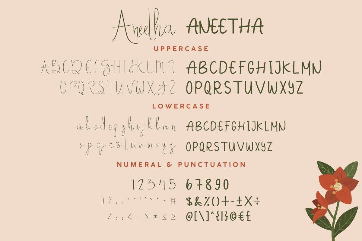 Aneetha example image 5