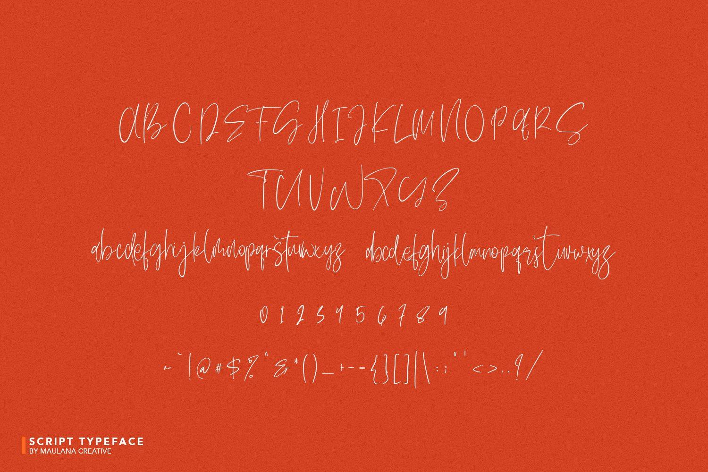 Delycious Script Restaurant Typeface example image 7