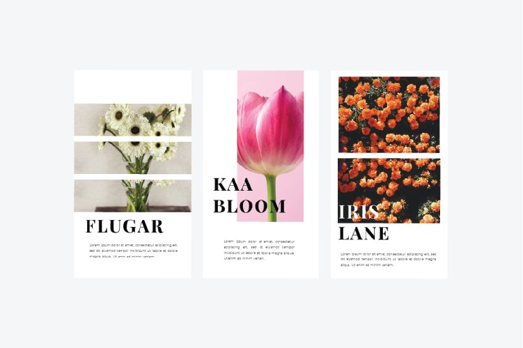 Flowers Instagram Template & Instagram Stories example image 7