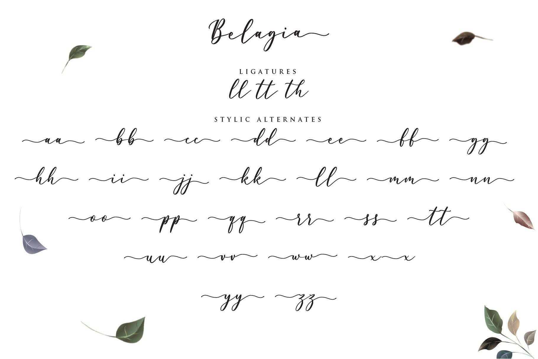 Belagia - Classy Calligraphy example image 5