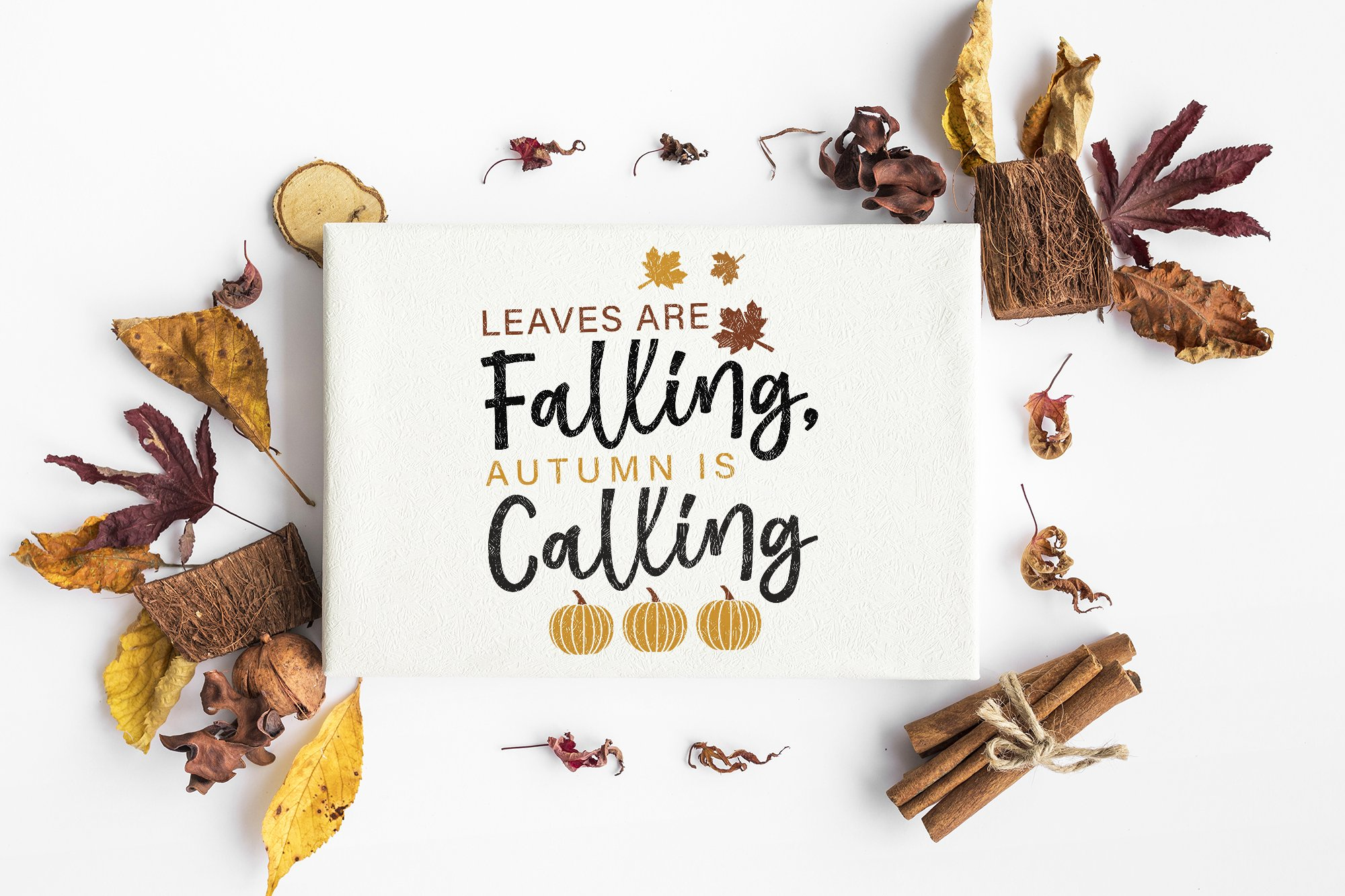 Fall Svg Leaves Are Falling Autumn Is Calling Svg Cut Files 749321 Cut Files Design Bundles