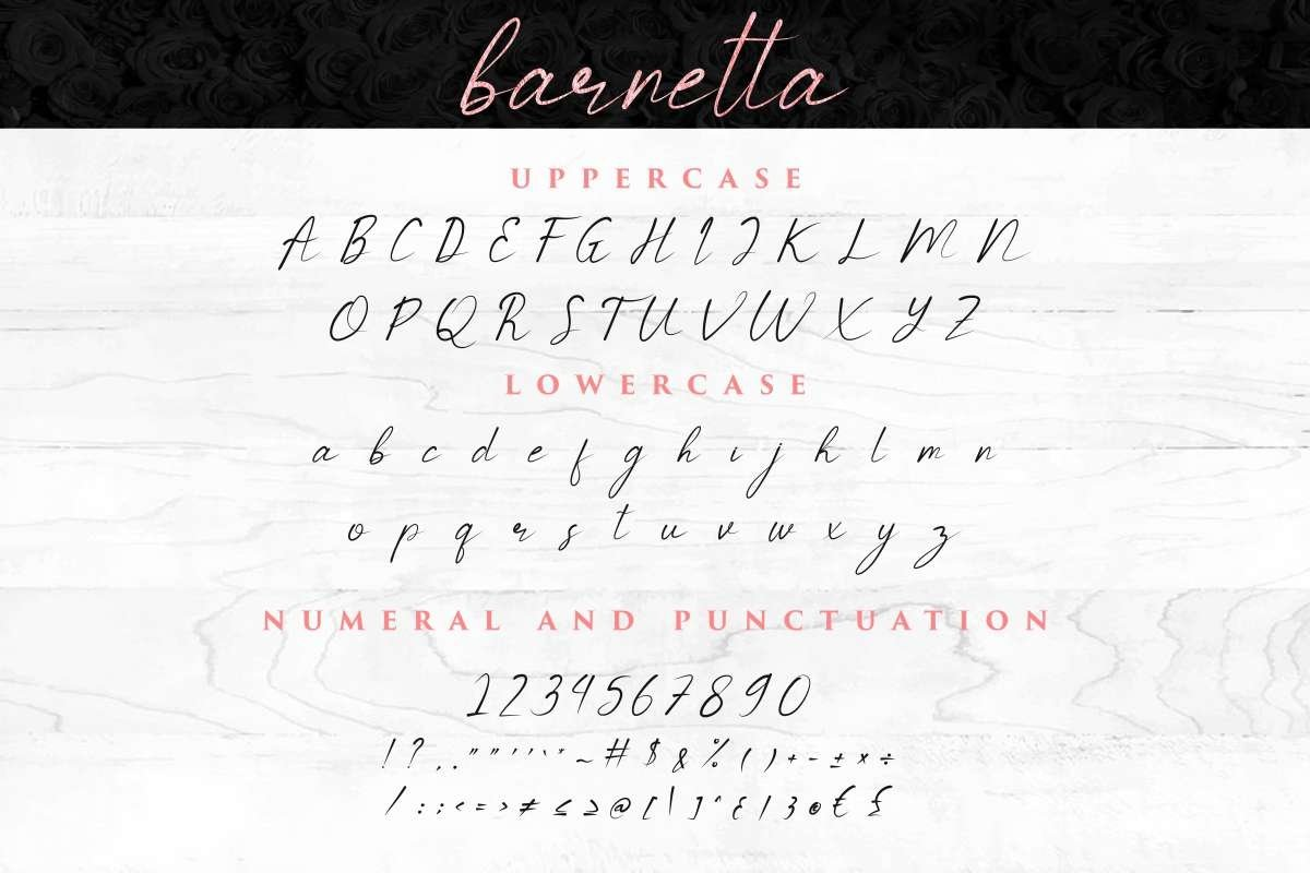 Barnetta example image 5