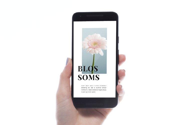 Flowers Instagram Template & Instagram Stories example image 2
