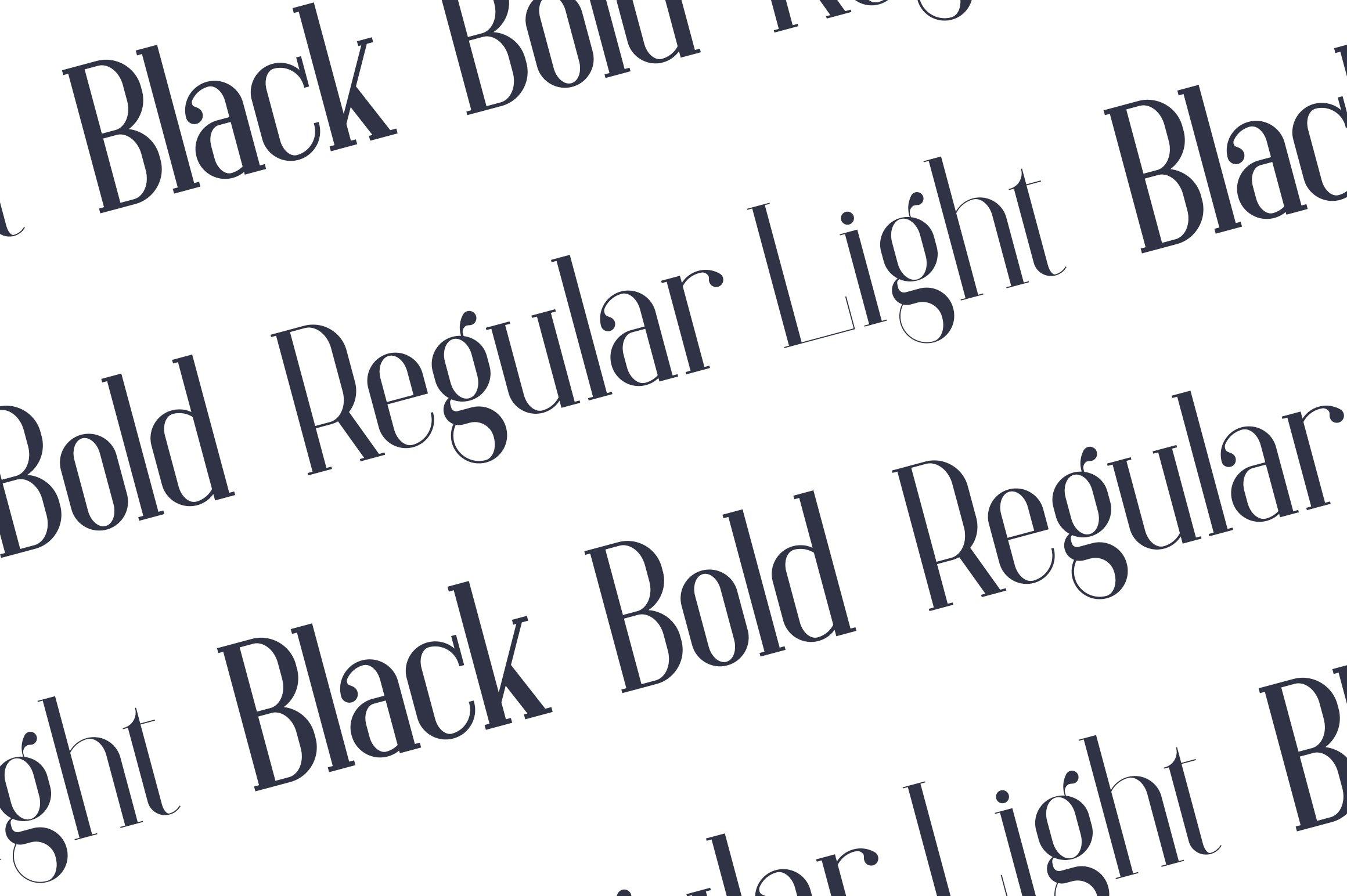 Baleine - Serif Typeface   4 weights example image 2