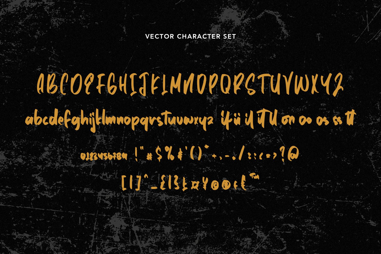 Declassify - SVG Script Font example image 7
