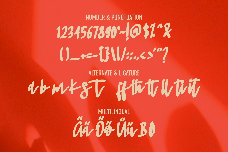 Mitha - Beauty & Bold Script Font example image 5
