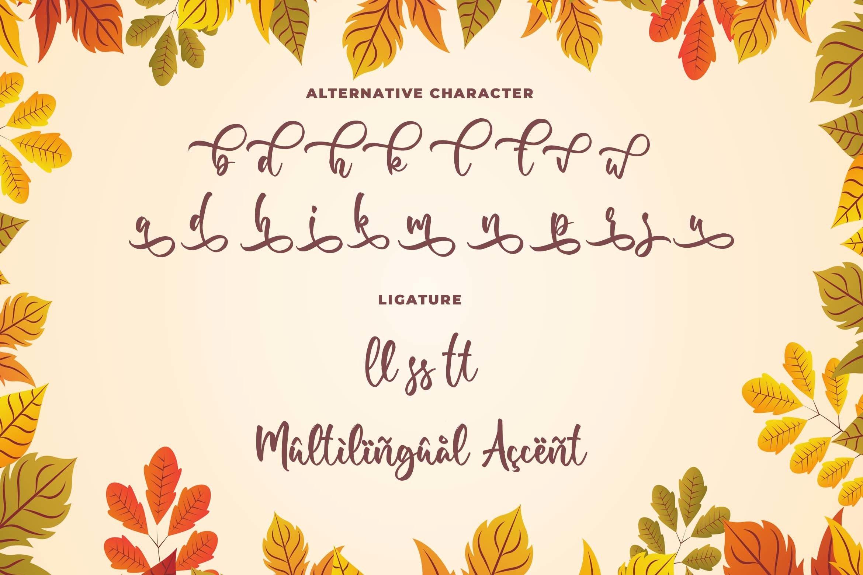 Samberia a Modern Script Font example image 7