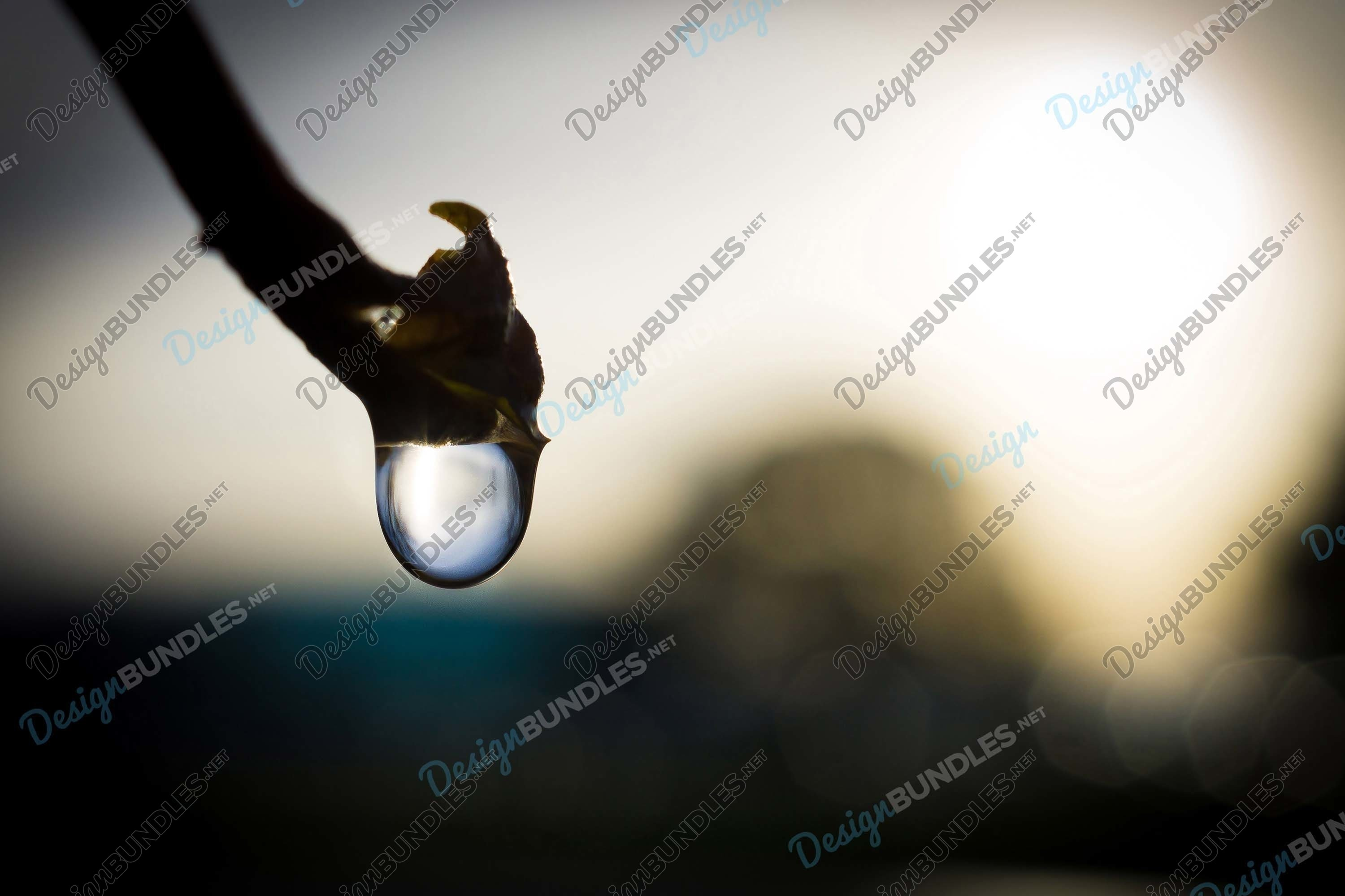 Stock Photo - water droplets example image 1
