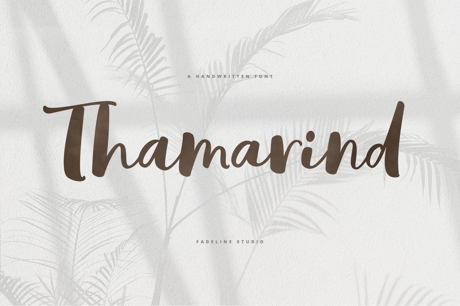 Thamarind Handwritten Font example image 1