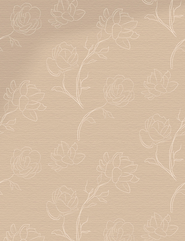 Line drawing White Jasmine Flower illustrations. Wreaths. example image 5