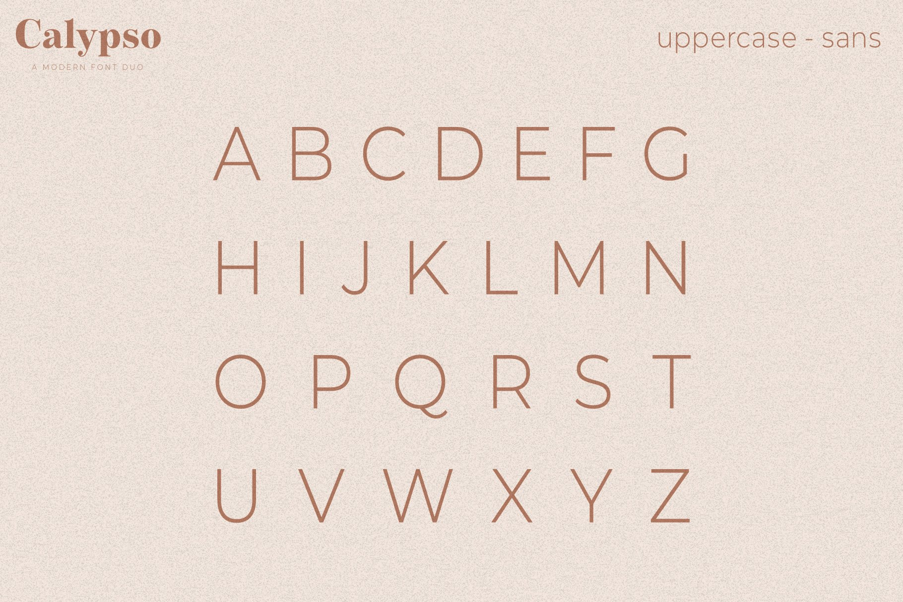 Calypso // A Modern Font Duo example image 18