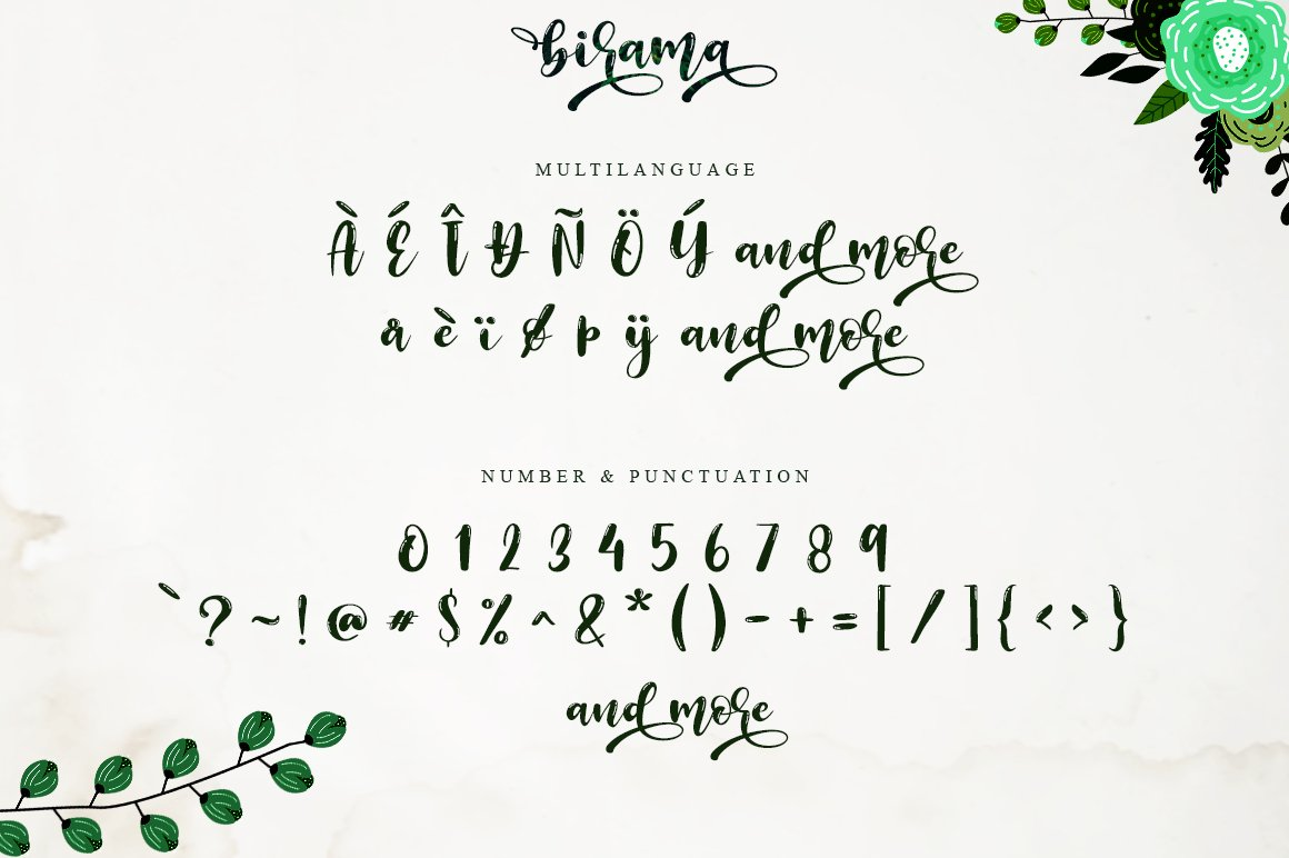 Birama a Beauty Modern Calligraphy Script example image 8