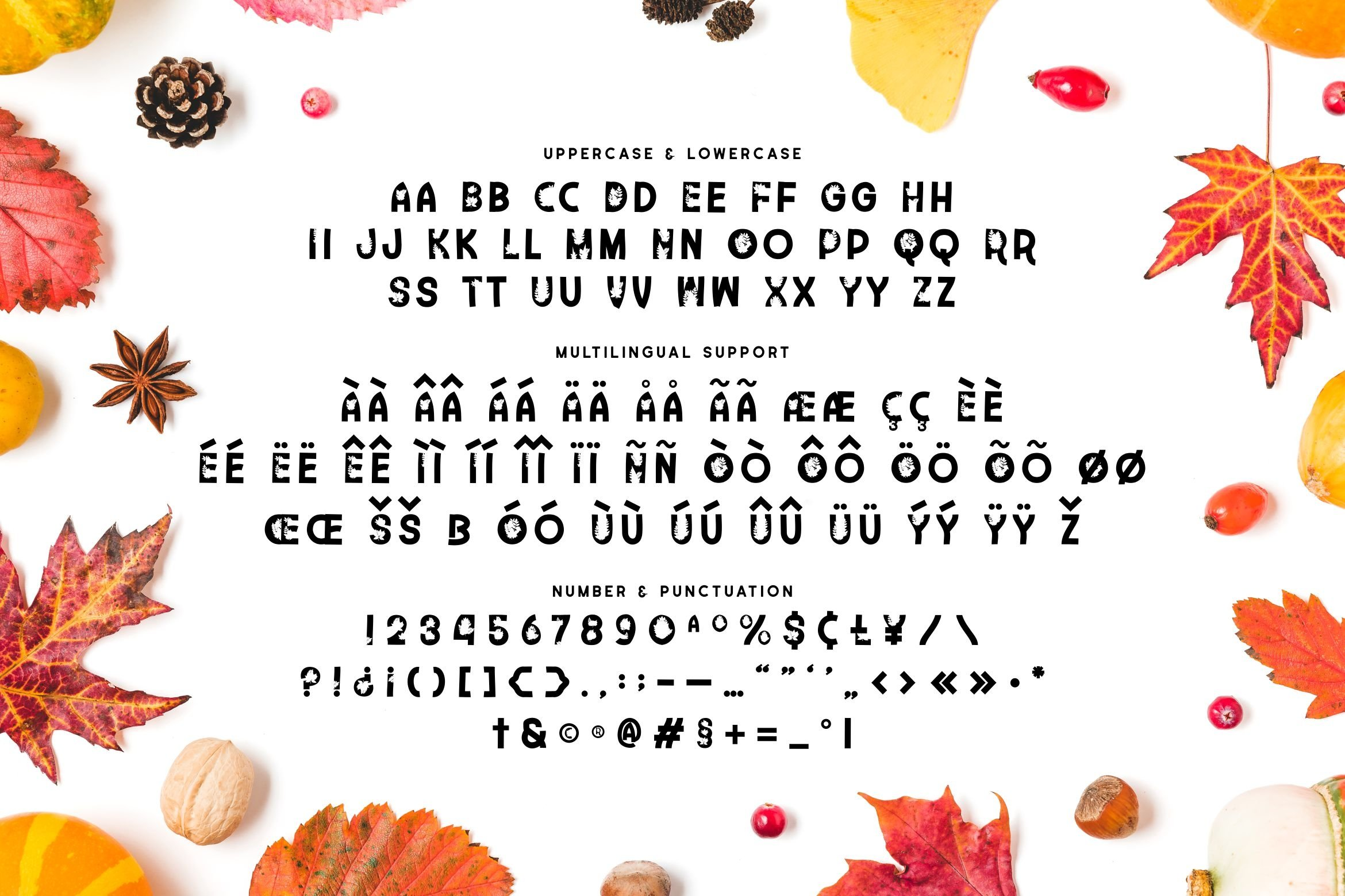 Time Too Leaf Font example image 5