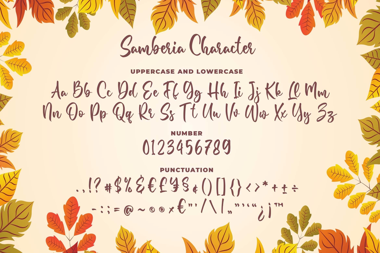 Samberia a Modern Script Font example image 6