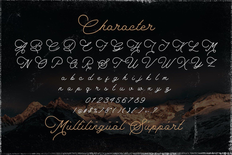 The Saily - Monoline Retro Script Font example image 15