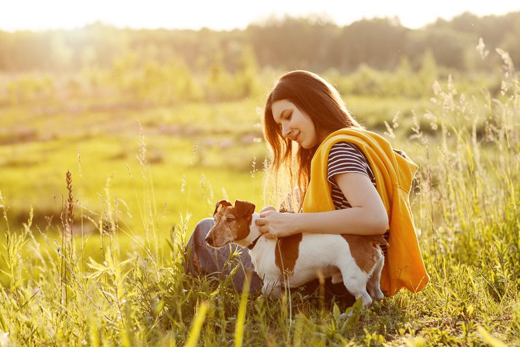Young girl sitting on the grass and hugs a dog Jack Russell example image 1